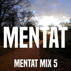 Mix 5 cover, a track in a forest with sunset